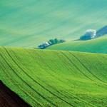 푸른 물결 넘실대는 그림 같은 땅, 체코 남모라비아